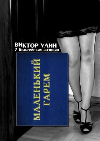 Маленький гарем - Виктор Улин