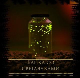 Банка со светлячками - Александр Папченко
