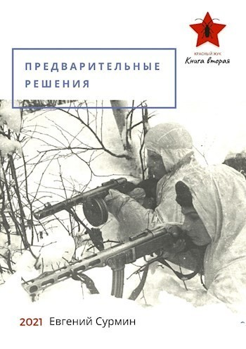 Предварительные решения - Евгений Сурмин