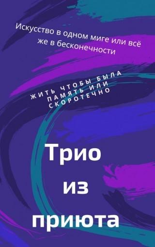 Трио из приюта - Кирилл Де Совье
